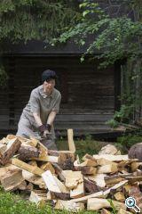 hukkataival firewood fotoausstellung internationales waldkunst zentrum 2016 web