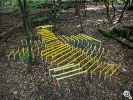 munz spring colonies wkp7 goenner 8120752 web